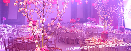 Disc Jockey mariage - Salle Pavillon Cambon Capucines - Paris